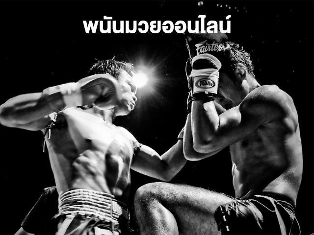 สนุกสนานศึกจ้าวมวยไทย
